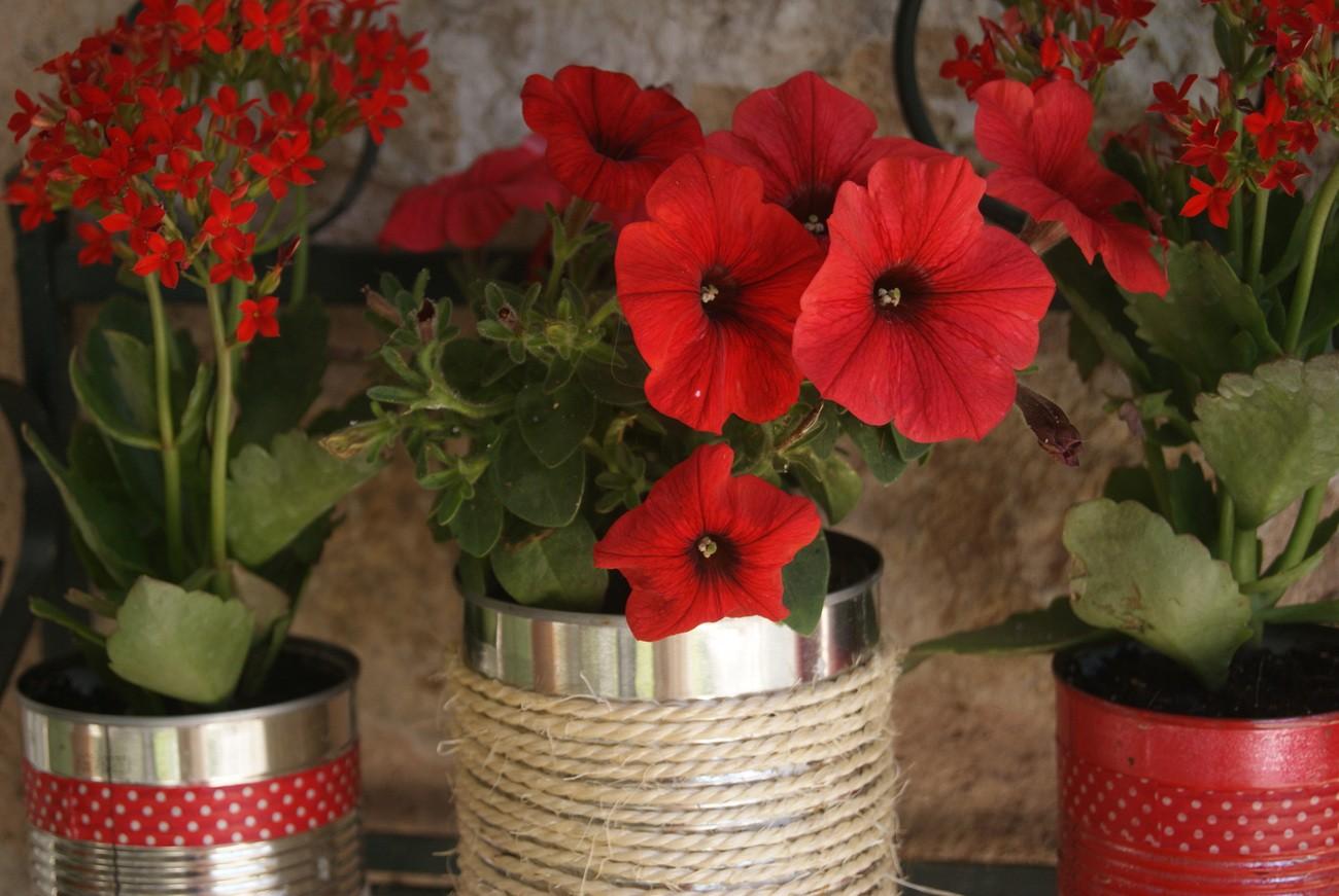 DIY - Les pots de fleurs
