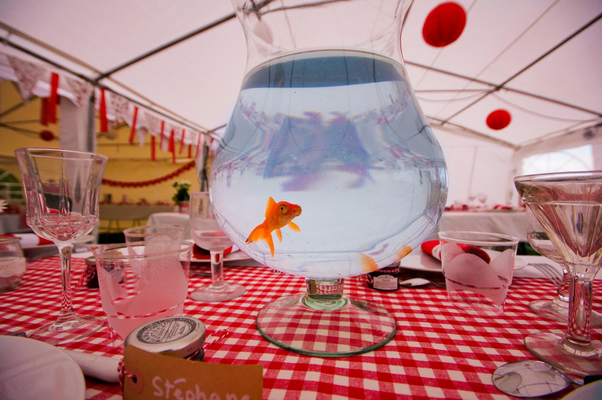 Blog les marioche la d co de table for Deco poisson rouge